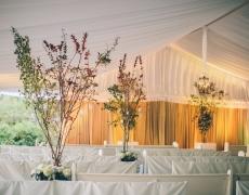 guthrie_wedding-0526