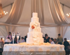 Lapane-wedding-0089
