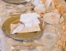 Lapane-wedding-0091